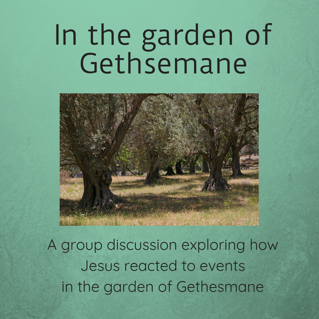 In the garden of Gethsemane a group discussion Sunday school lesson kids church Bible lesson childrens ministry kids ministry youth work