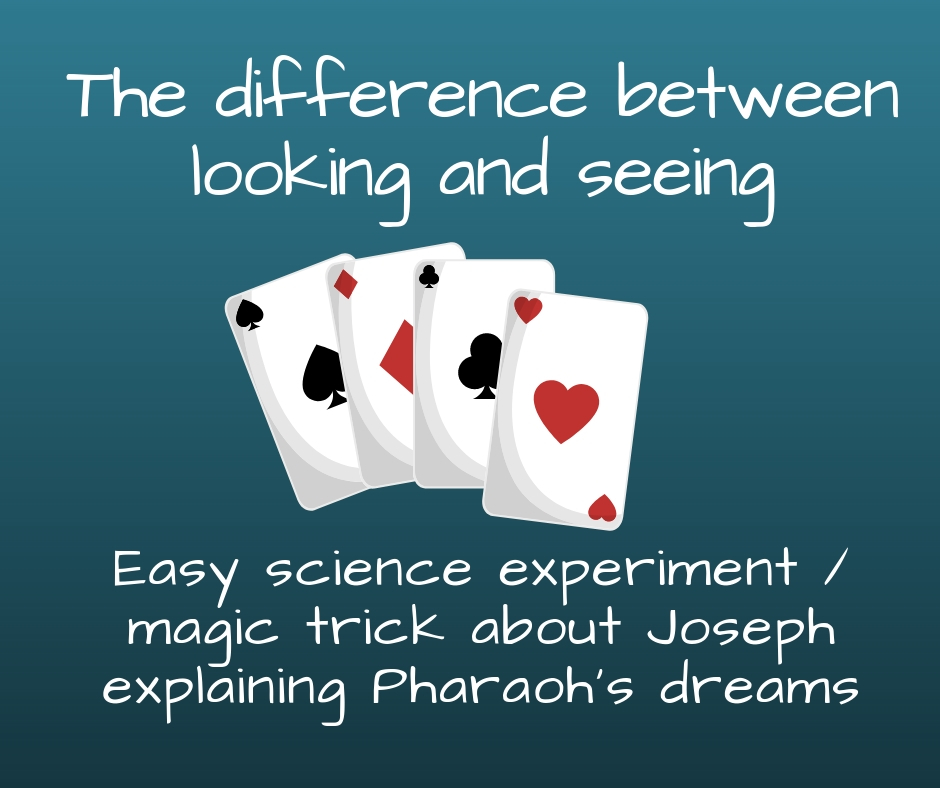 The difference between looking and seeing