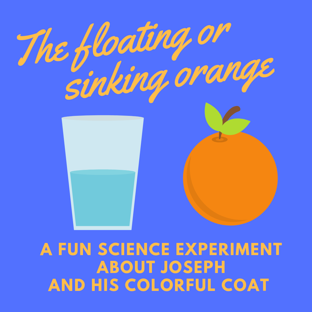 The floating or sinking orange a fun science experiment about the bible story of Joseph and his colorful coat