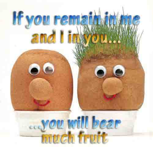If you remain in me and I in you you will bear much fruit